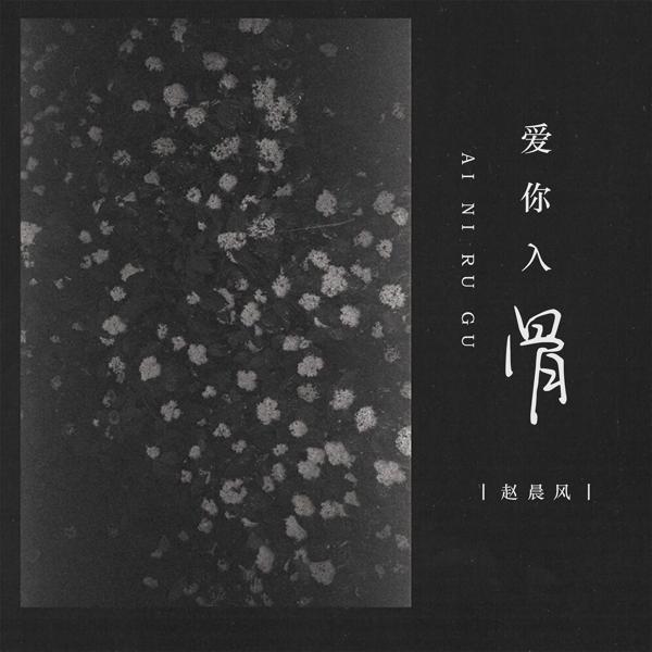 赵晨风 все песни в mp3