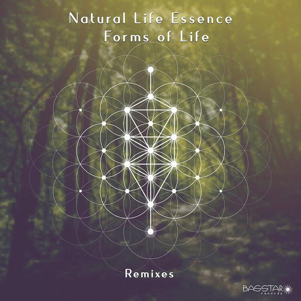 Музыка от Natural Life Essence в формате mp3
