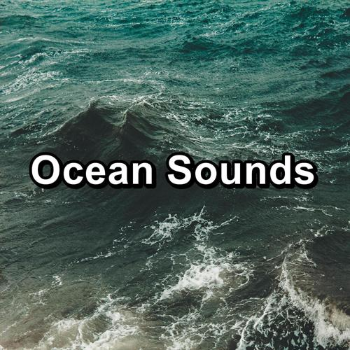 Ocean Sounds Collection, Rain Sounds, Calming Waves - Sound of the Seashore  (2020)