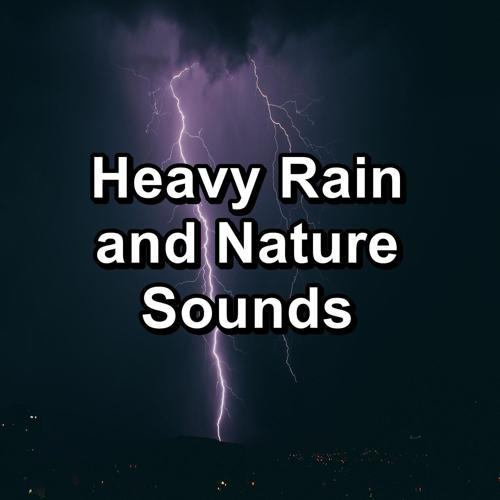 Nature and Rain, Relaxing Rain Sounds, Meditation Rain Sounds - Calm Rain Showers To Help You Sleep  (2020)