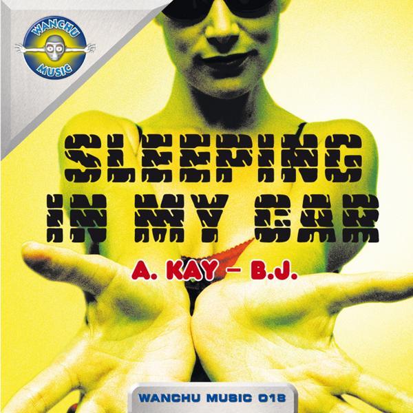 Альбом: Sleeping in My Car