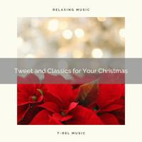 Animal - Happy are Christmas with Classics and Calmful Wild Birds Tweets