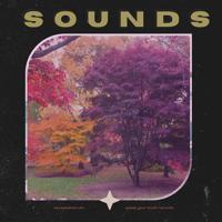kevspeakstruth - SOUNDS