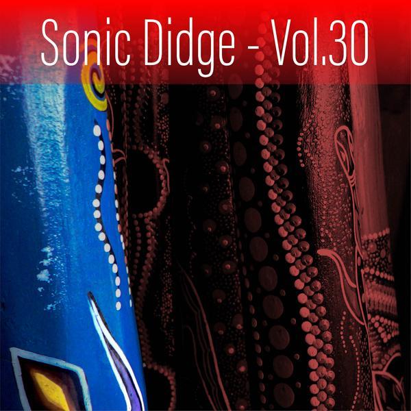 Альбом: Sonic Didge, Vol. 30