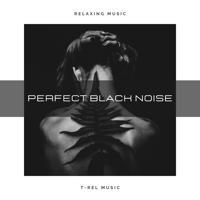 White Noise Therapy - Bargain Black Friday Black Noise