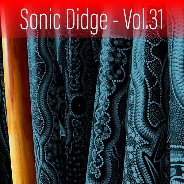 Альбом: Sonic Didge, Vol. 31