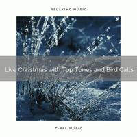 Water Soundscapes - Refreshing Christmas Holidays with Best Songs and Nature Noises