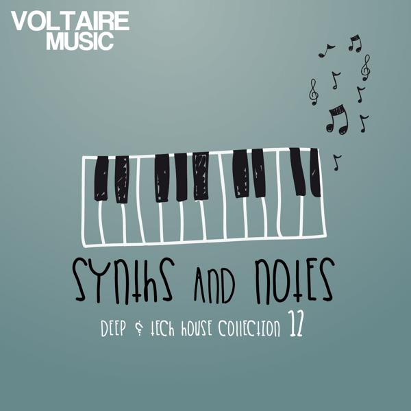 Альбом: Synths and Notes 12