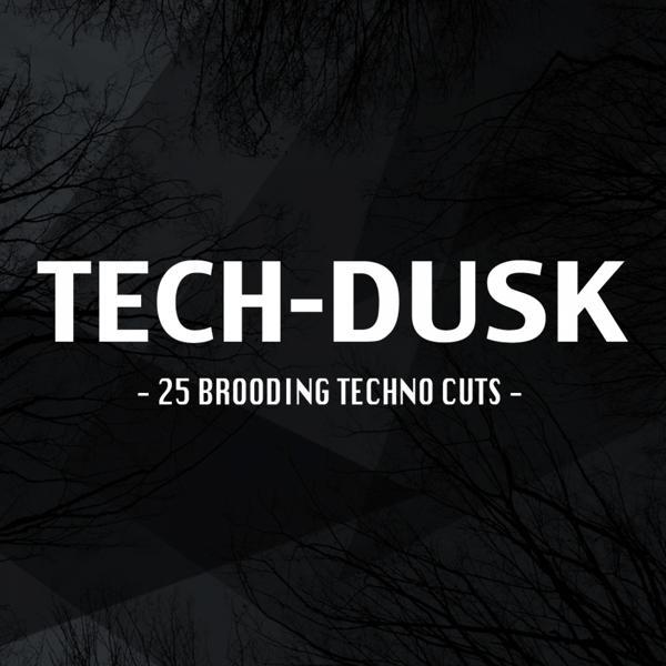 Альбом: Tech-Dusk: 25 Brooding Techno Cuts