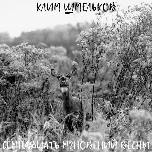 Альбом: Семнадцать мгновений весны