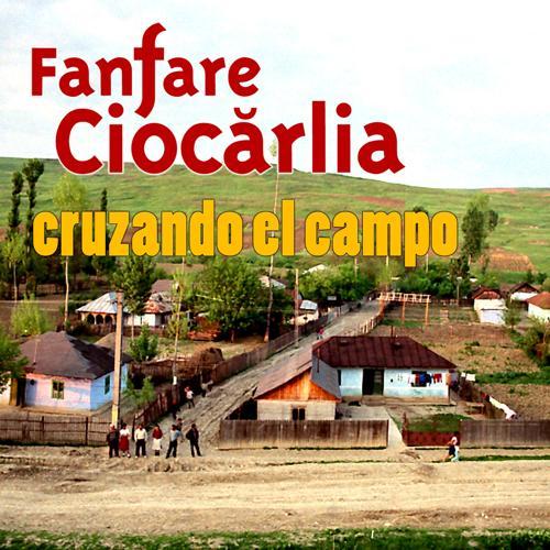 Fanfare Ciocarlia - Cruzando el Campo