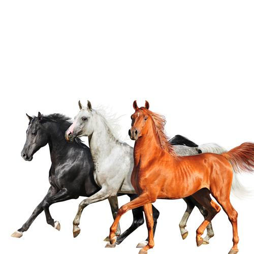 Lil Nas X, Billy Ray Cyrus, Diplo - Old Town Road (Diplo Remix)  (2019)