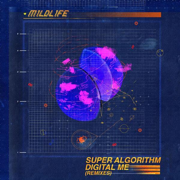 Альбом: Super Algorithm Digital Me - Lincey Remix